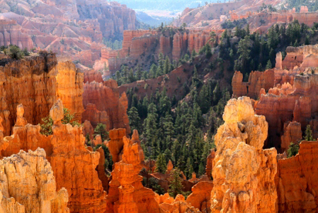 Photo of Bryce Canyon National Park in morning light